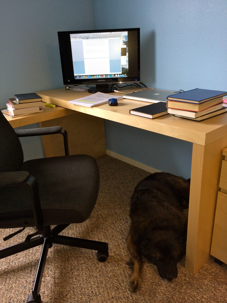 dissertation station