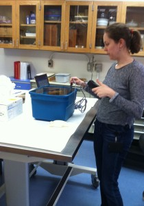 Conservator Carrie Roberts tests salt levels in the bath