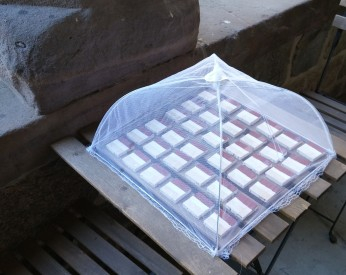 Mockups are set outside under a food net to prevent contamination from bird droppings