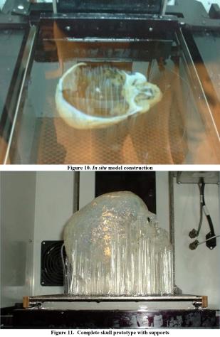 Printing of 3D model of mummy's head