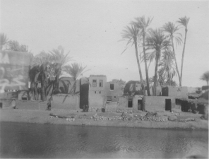 """Image KS175_10: April 28, 1920; George R. Swain; """"Typical village and palm trees by a canal."""""""