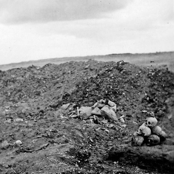 pile of skulls in barren landscape