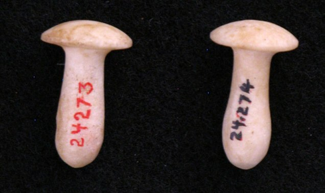 two mushroom-shaped alabaster earplugs