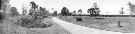 Cairo, Egypt. View in the park on Gezireh island. Flower beds in blossom at the left, trees (including palms) scattered about. Road down the center passing under bridge of palm logs. Expanse of lawn at the right, with shrubbery beyond. A lovely park. Size, 9 1/2 x 32 1/2 in. Cirkut027P01.