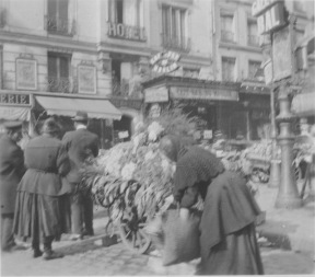Paris, France. A flower push cart. KS014.12.