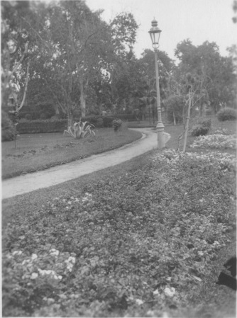 Cairo, Egypt. Ezbekieh gardens, flower beds and vista down a walk. KS142.11.
