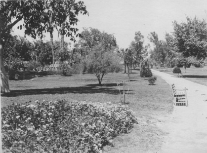 Cairo, Egypt. Flower beds, lawns, trees, shrubbery, on Gezireh island. KS159.12.