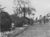 Cairo, Egypt. Flower beds, shrubbery and lawns, Gezireh island. KS160.04.