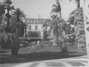 Black and white photo of a garden
